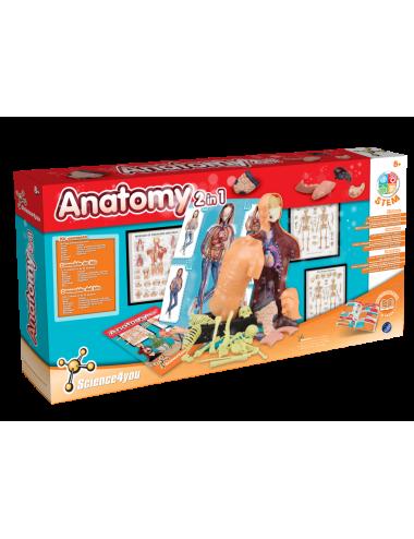 Cuerpo Humano - Anatomía 2...