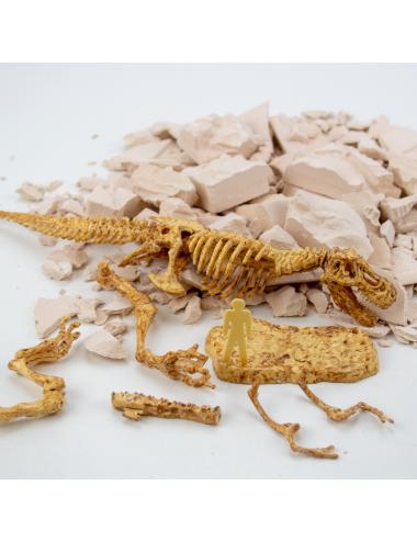 Juego Dinosaurio T-Rex  Excavaciones