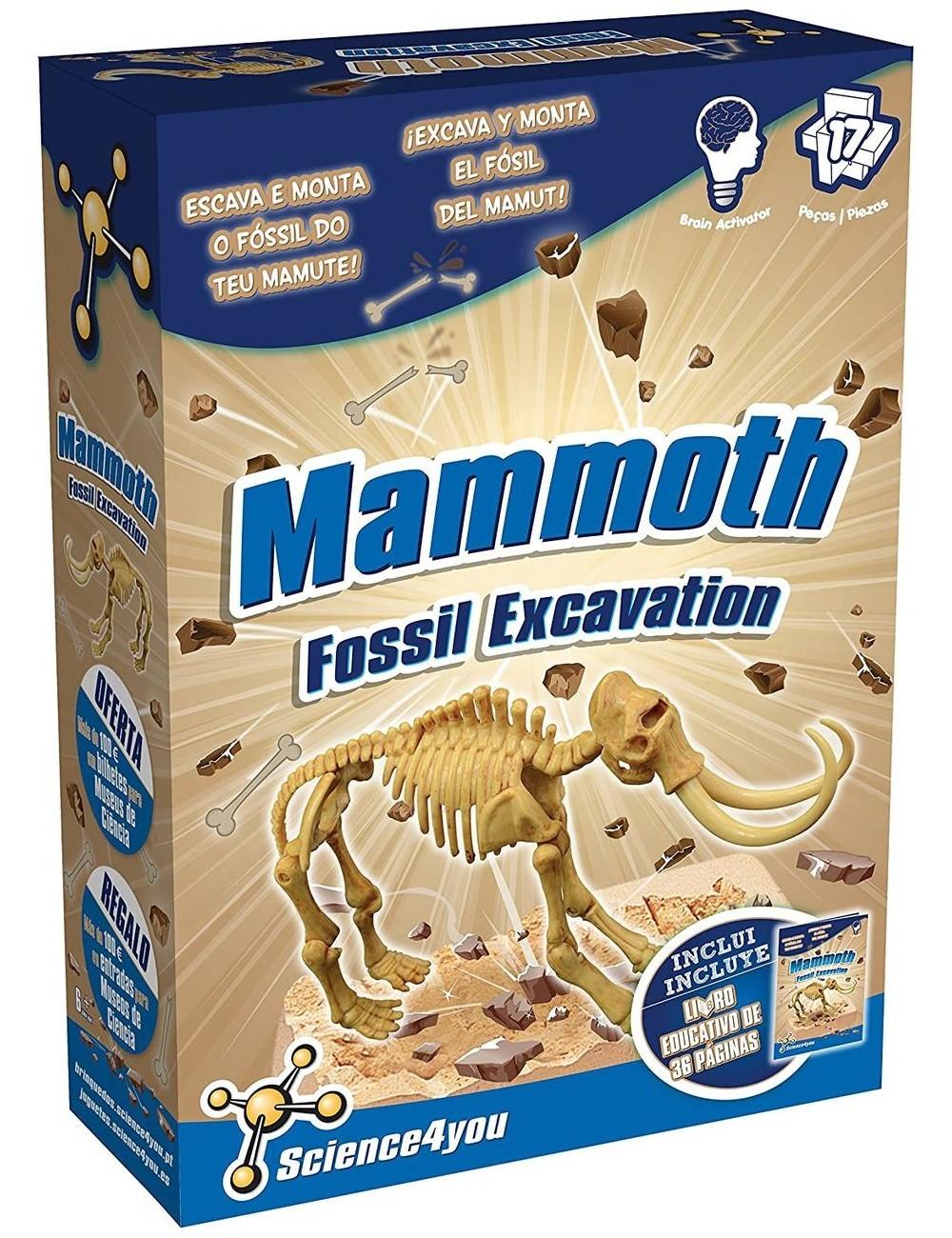 Excavación Fósil Mamut